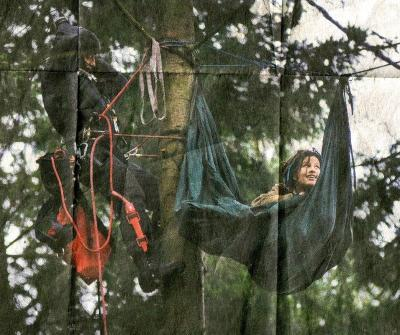 Baumbesetzung